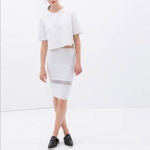 ZARA Tube Skirt With Sheer Detail S